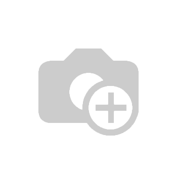 Decorative Figure Turtle